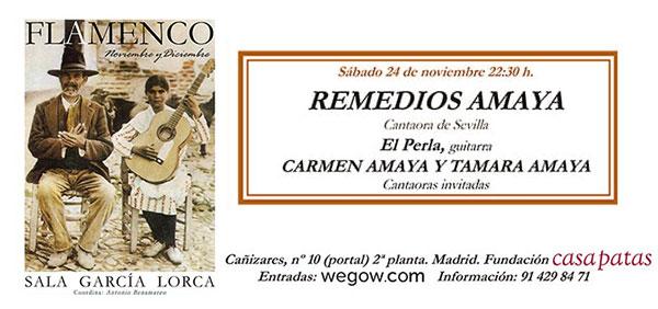 Remedios Amaya - Sala García Lorca