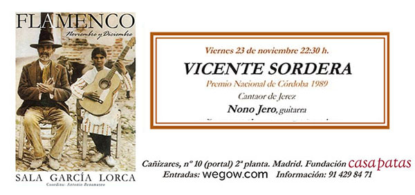 Vicente Soto Sordera - Sala García Lorca
