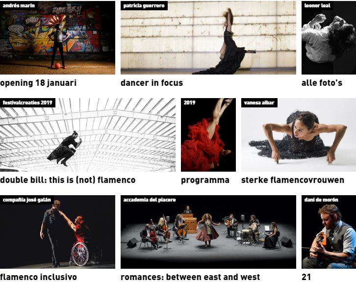 Flamenco Biënnale Nederland 2019