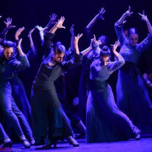 Dia Internacional del Flamenco - CP Danza Fortea