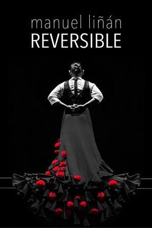 Manuel-Linan-Reversible