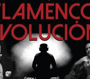 Flamenco Evolución