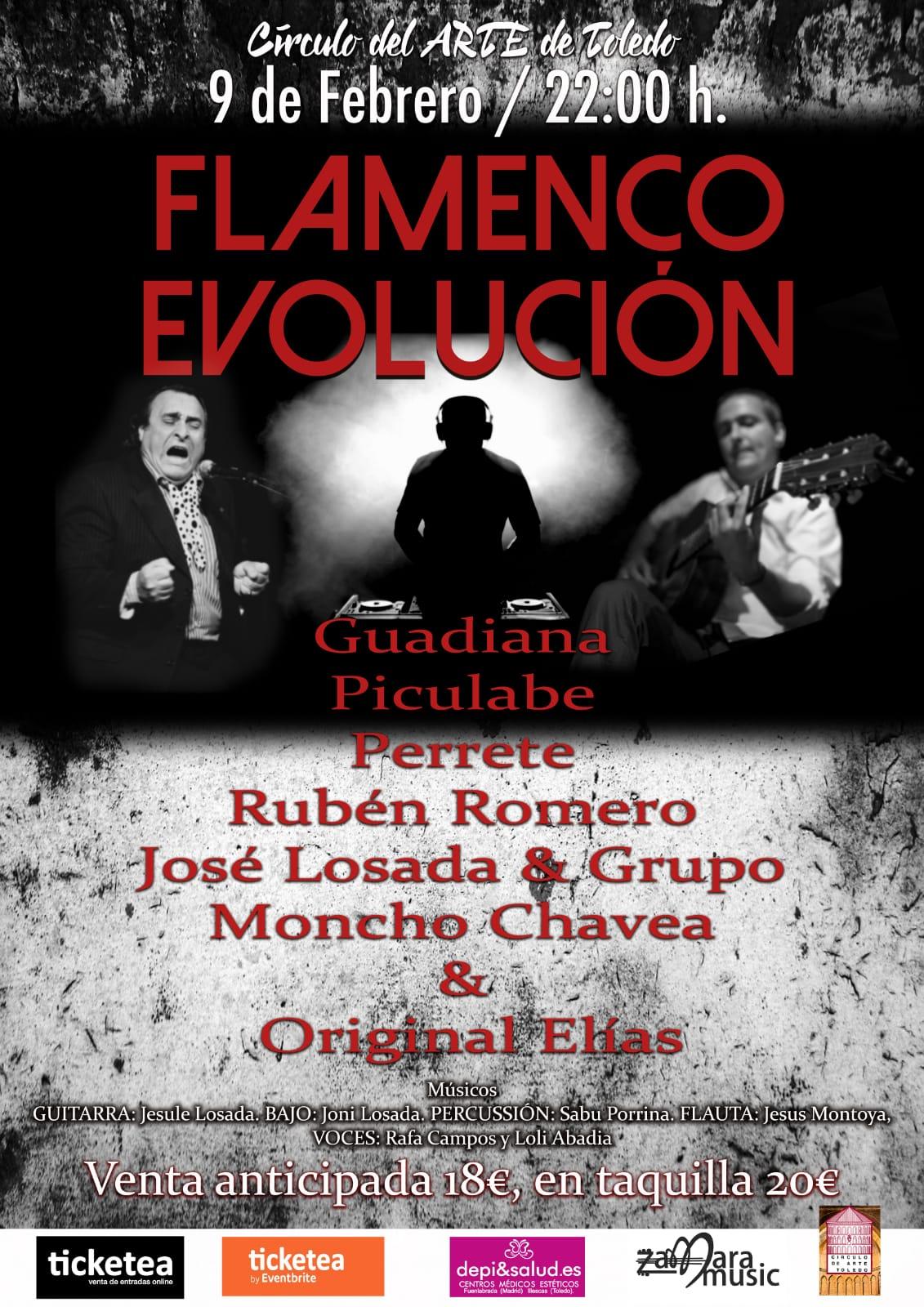 Flamenco y Evolución - Toledo