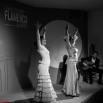 Centro Cultural Flamenco Madrid