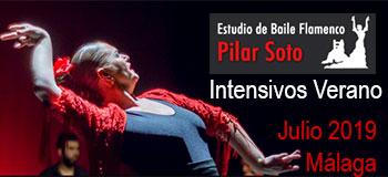 Pilar Soto  Intensivos Flamenco Málaga