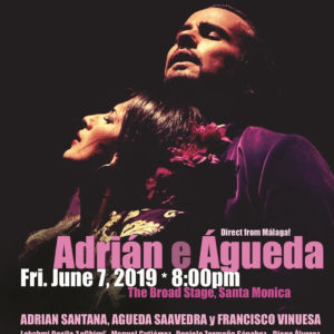 Cumbre Flamenca Adrian Santana