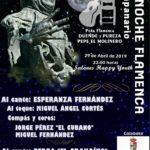 Noche Flamenca Campanario