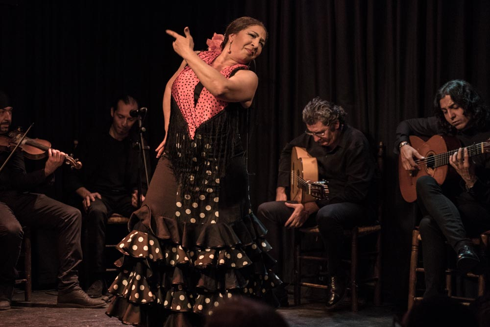 Elena Andújar