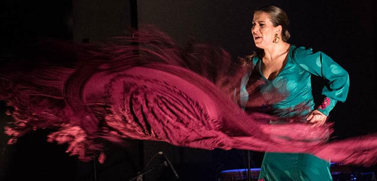 Guadalupe Torres 'Los colores de Magdalena' (fotos & videos)