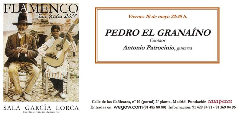 Pedro el Granaíno - San Isidro Flamenco
