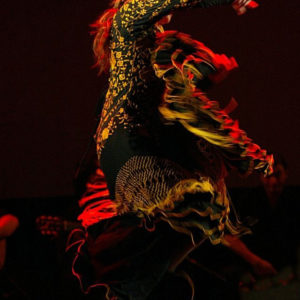 Flamenco La Villette