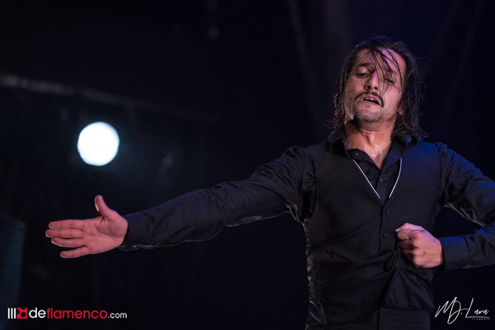 Álvaro Guarnido - Semifinales Cante de las Minas