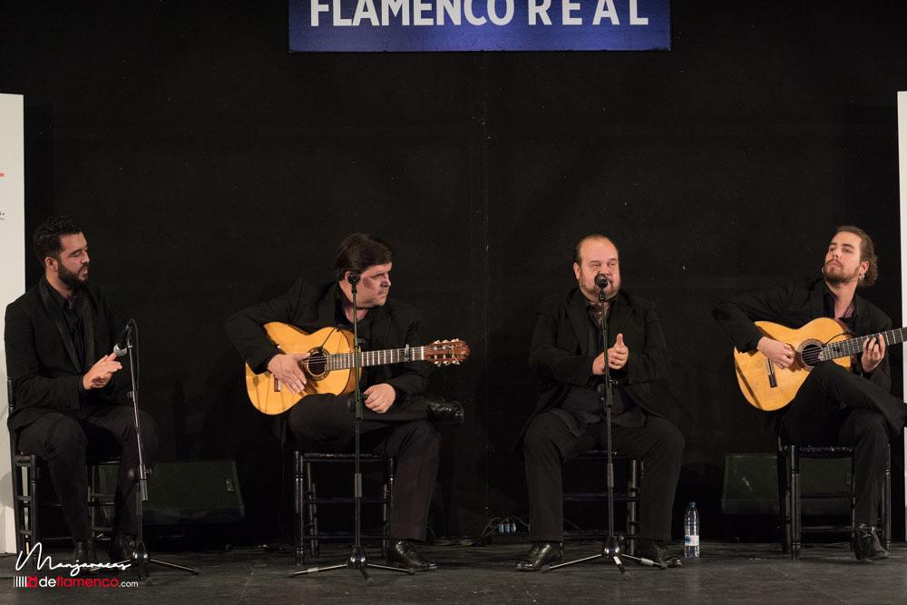 Flamenco Real presentación