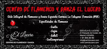 Escuela de Flamenco - El Lucero