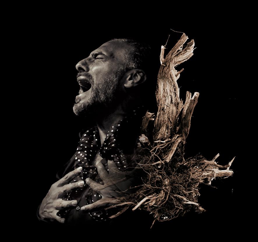 Delibes + Flamenco - Pedro el Granaíno