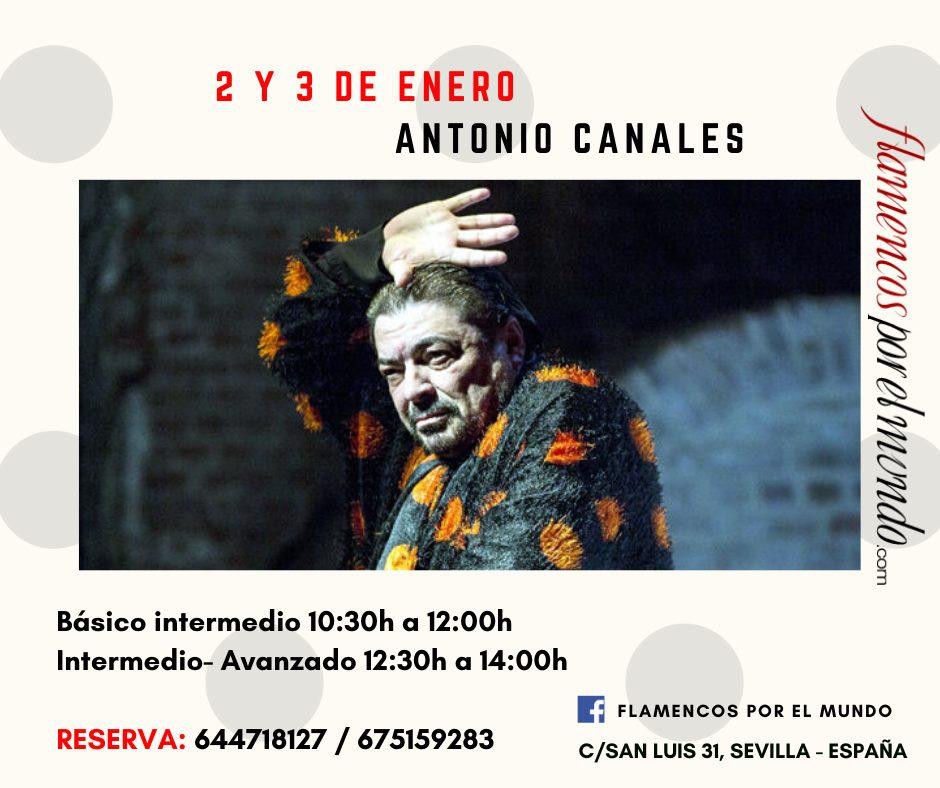 Flamencos x el Mundo - Antonio Canales