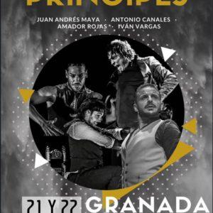 Príncipes - Juan Andrés Maya