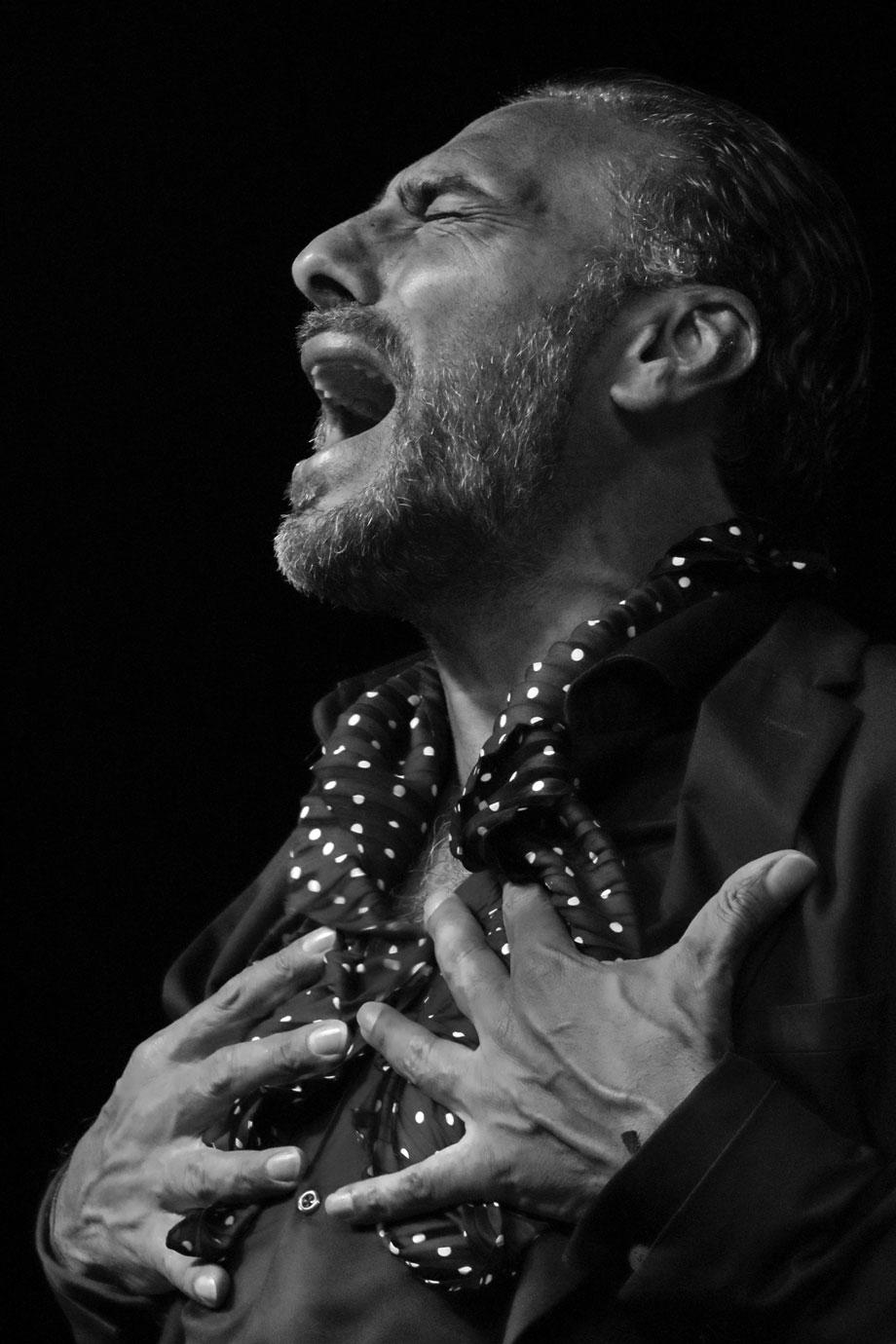 Pedro el Granaíno - foto Jesús Amat