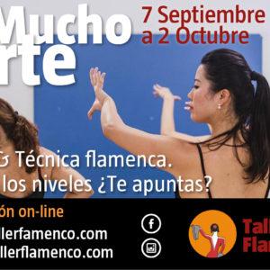 Taller Flamenco - Mucho Arte