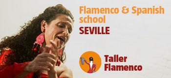 Taller Flamenco - Workshops