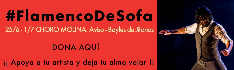 Choro Molina - #flamencodesofá