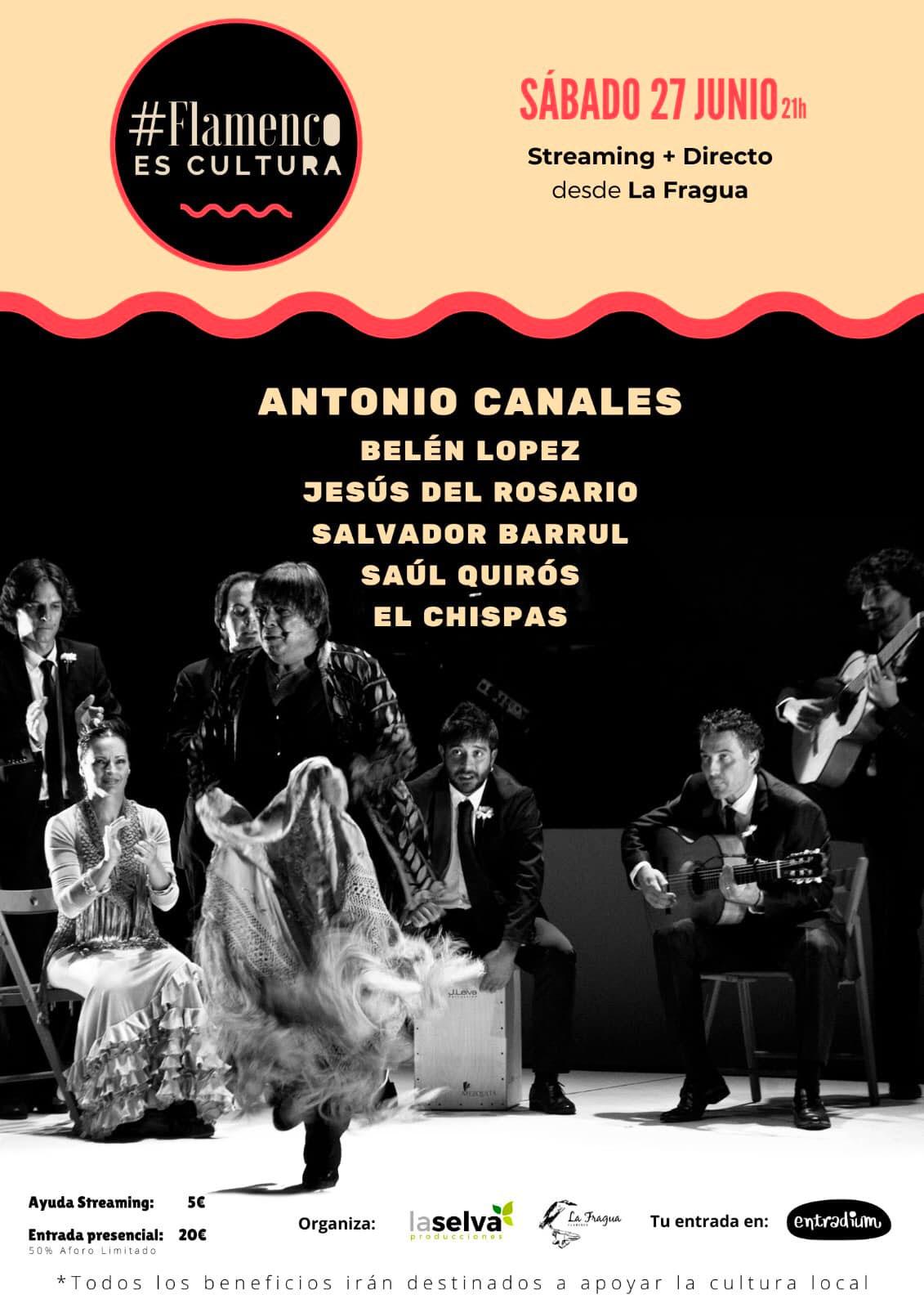 La Fragua - Antonio Canales
