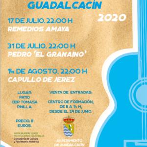 Verano Flamenco Guadalcacín