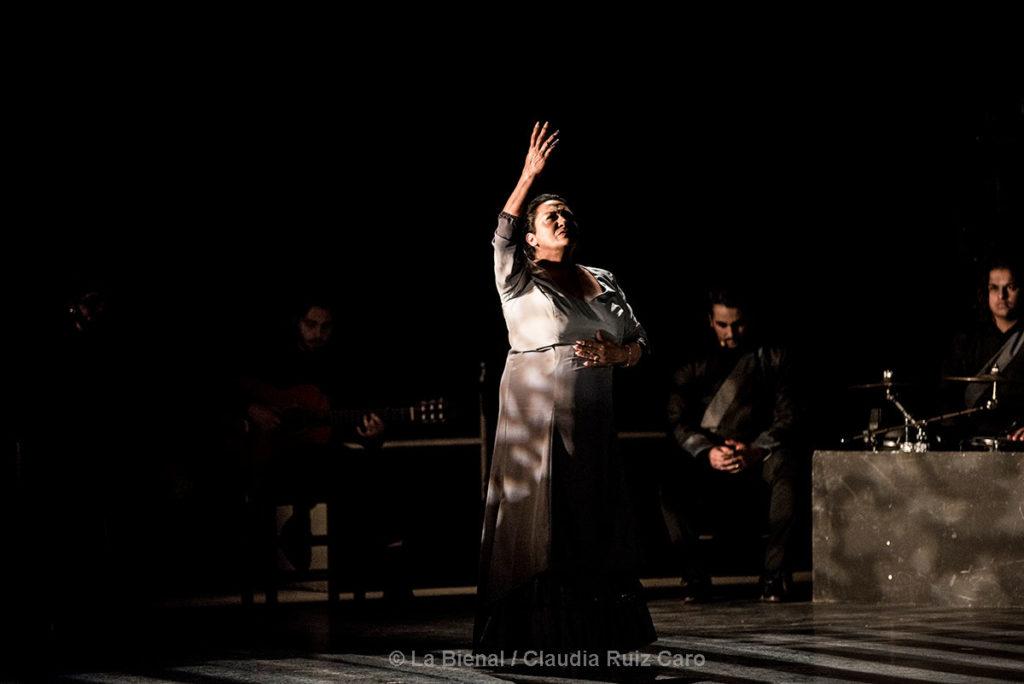 La Farruca - La Bienal/Claudia Ruiz Caro