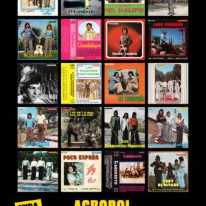 Acropol - Expo MIradas Flamenkas