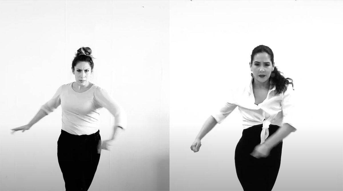 Flamencos de Cuarentena