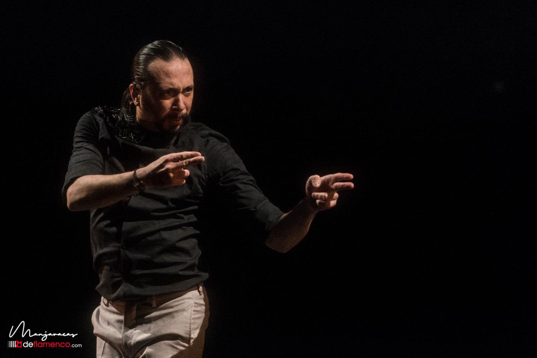 José Maya - Latente - Suma Flamenca