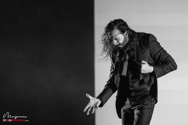 José Maya «Latente» – Suma Flamenca