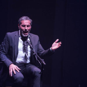 Pedro el Granaino - Suma Flamenca