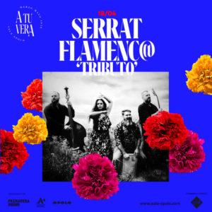 "Serrat Flamenco ""Tributo"" - A tu vera"