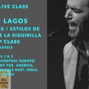 David Lagos - I am flamenco singing school