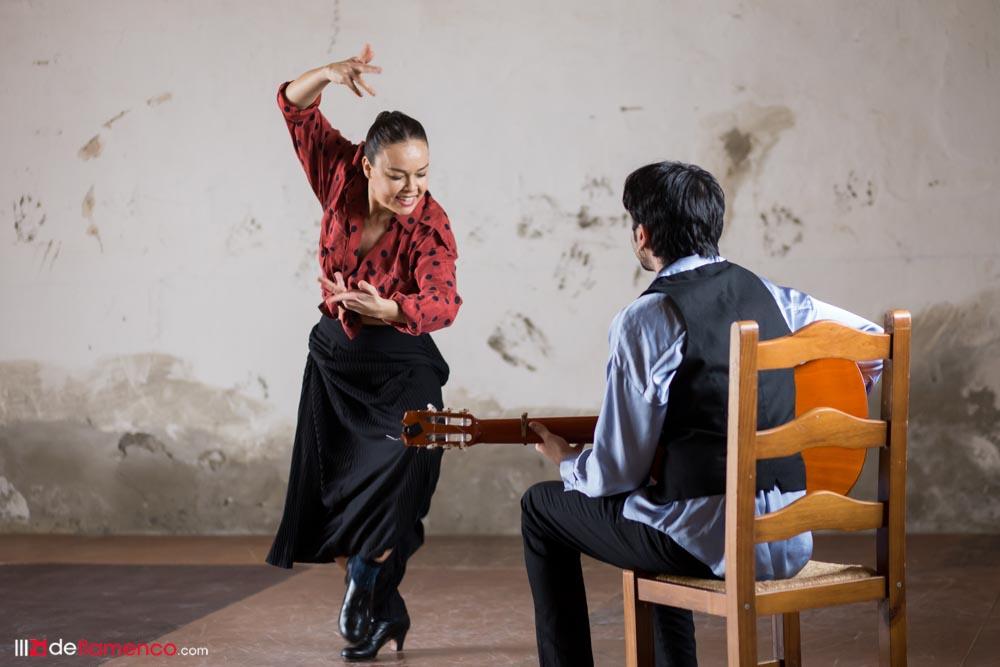 Flamenco Biënnale Nederlands en streaming desde Andalucía – Fotografías
