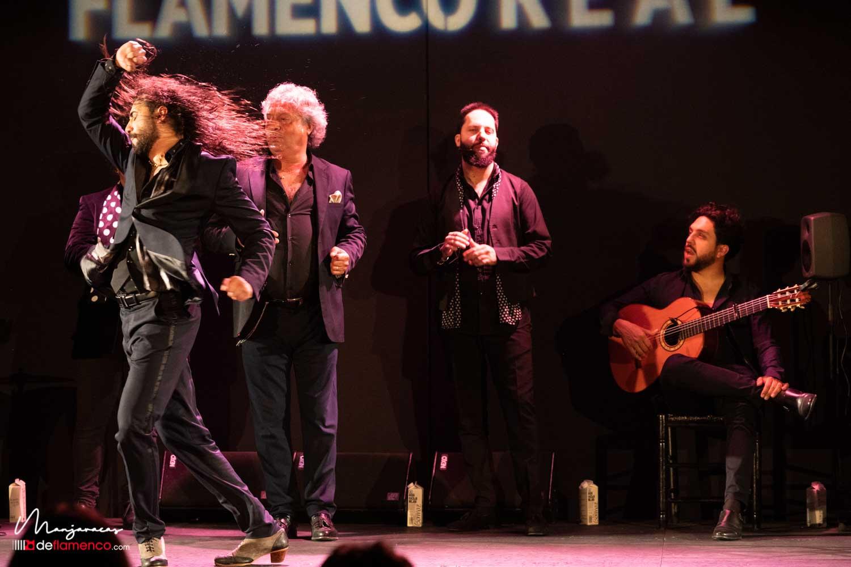 Rapico - Flamenco Real