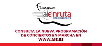 Flamencos AIEnRuta 2021