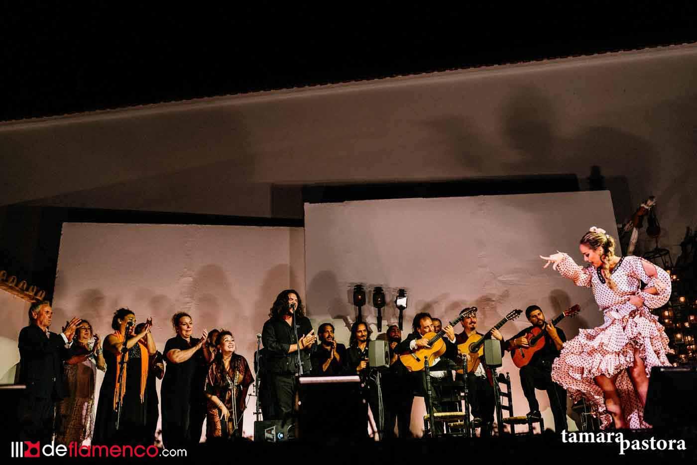 LII Reunión de Cante Jondo en imágenes