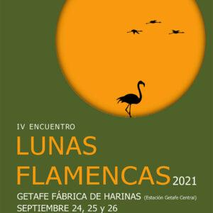 Encuentro Lunas Flamencas - Getafe